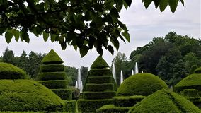 Brunnen unter dem Topiary Stockfoto
