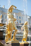Brunnen von Petergof Lizenzfreies Stockbild