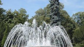 Brunnen in Vrnjacka Banja, Serbien stock footage