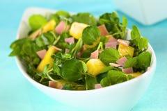 Brunnenkresse, Ananas und Ham Salad Stockfotografie
