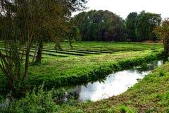 Brunnenkresse-Bauernhof vor Ernte in ländlichem Frankreich Lizenzfreie Stockfotos