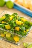 Brunnenkresse-, Mango-und Avocado-Salat Lizenzfreie Stockbilder