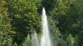 Brunnenwasser spritzt Parkbrunnen ein stock video