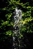 Brunnenwassertropfen Stockfotos