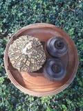 brunnsort 7 royaltyfria foton