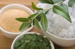 brunnsort för ny olivgrön för badfilial salt Arkivfoton