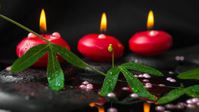 brunnsortbegrepp av passiflorafilialen, pärlapärlor och röda stearinljus Arkivfoton