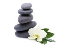 brunnsorten för bakgrundsblommaorchids stenar zen Arkivbild