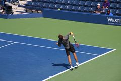 Bruno Soares. Tennis players Bruno Soares at the 2017 US Open tennis grand slam Royalty Free Stock Photos