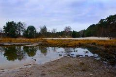 Brunssumer moorland Fotografia Royalty Free