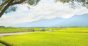 Brunswick Avenue. Taitung County is a rural road stock video footage