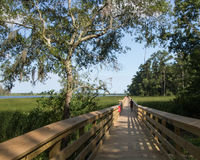 Brunswick Riverwalk. Fresh water marshes, ancient bald cypress trees, and southern live oaks grow along the edge of the Brunswick River in North Carolina Stock Image
