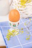 Brunt ägg i keramisk blom- kopp, på blå servett, vide- korg med blommor, vit tabletop, påsk, vår Royaltyfri Fotografi