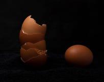 Brunt ägg som isoleras över den svarta bakgrundsfrukosten som är sund Arkivfoto
