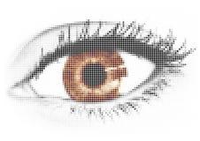 brunt öga Arkivfoto