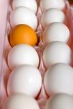 brunt dussint ägg arkivbilder