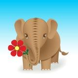 brunt elefant Arkivfoto
