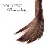 Brunt hår på vit bakgrund med text Royaltyfria Bilder