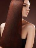 Brunt hår. Stående av den härliga kvinnan med långt hår. Arkivfoton