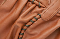 brunt läder Royaltyfri Bild