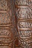 brunt läder Royaltyfria Foton