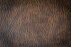 Brunt läder och yttersida Royaltyfria Foton