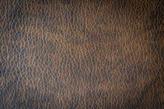 Brunt läder och yttersida Royaltyfria Bilder