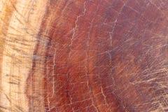 Brunt mörker skrapat träklipp, skärbräda Trä texturerar royaltyfria foton