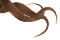 Brunt mörkt naturligt hår som isoleras på en vit bakgrund arkivfoton
