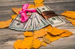 Brunt och rosa band för amerikanska pengar Royaltyfri Bild
