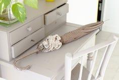 Brunt och vitt paraply Royaltyfria Bilder