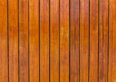 Brunt trä Arkivbild