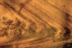 brunt trä för bakgrund Arkivfoto