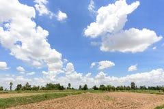 Brunt vårfält och molnig himmel Royaltyfri Bild