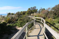Bruny Island Bush Trail. A photo of a board walk in Australia, that guides you through the Australian Bush, out to the sea stock photos