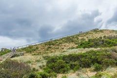 Lookout steps on Bruny island neck nature reserve. Bruny Island Neck, Tasmania, Australia - December 20, 2016: lookout steps on Bruny island neck nature reserve royalty free stock photo