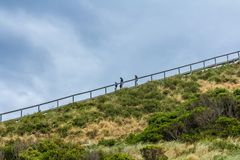 Lookout steps on Bruny island neck nature reserve. Bruny Island Neck, Tasmania, Australia - December 20, 2016: walkway on Bruny island neck nature reserve stock images