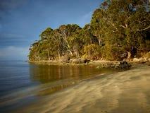 Bruny wyspy przygody zatoka przy zmierzchem Obrazy Stock