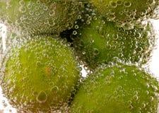 brusa key limefrukt Arkivbild