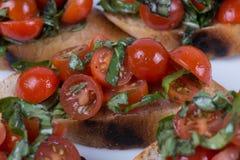 Bruschetta用蕃茄和蓬蒿 库存图片