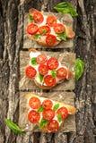 Bruschetta με την ντομάτα, το βασιλικό και το τυρί Στοκ φωτογραφία με δικαίωμα ελεύθερης χρήσης