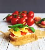 Bruschetta с томатами шпината и вишни на провозглашанном тост багете Стоковое Изображение RF