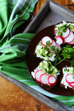 Bruschetta with cheese and radish Royalty Free Stock Photography