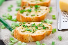 Bruschetta with cheese and scallion royalty free stock photos