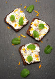 Bruschetta com as sementes do queijo e do chia de cabra Vista superior fotografia de stock