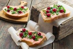 Bruschetta con la mantequilla, el caviar del capelín, el arándano y ella de color salmón fotos de archivo