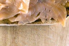 Bruschetta con los salmones fotos de archivo libres de regalías