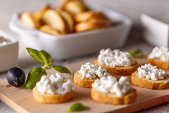 Bruschetta with cottage cheese Stock Image