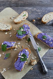 Bruschetta crunch with purple cabbage cream  and sunflower seed Stock Images