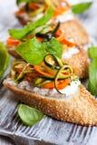 Bruschetta dello zucchini, della carota e del formaggio Fotografia Stock Libera da Diritti